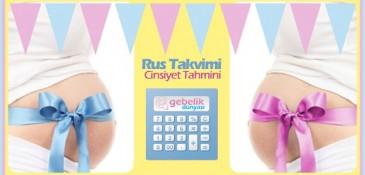 Bebek Cinsiyeti Hesaplama Aracı (Rus Takvimi)