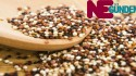 Kinoa Bitkisi Nedir? Besin Değeri ve Hangi Hastalıklara İyi Geldiği