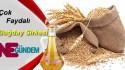 Dr. Feridun KUNAK Tarifiyle – Buğday Sirkesi