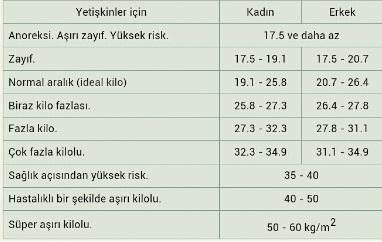 ideal-kilo-boy-hesaplama-araci